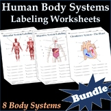 Human Body Systems Labeling Worksheets Activity Bundle - Science
