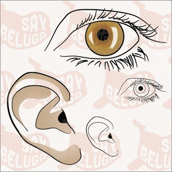 5 Senses / 7 Senses Clip Art Pack – Commercial