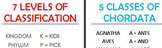7 levels of classification - 5 classes of Chordata
