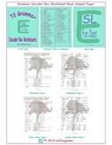 70 Grammar Decoder Box Worksheet Book