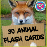 90 Animal Flash Cards - Real Photos of Animals