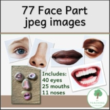 77 Photo Graphics of Face Parts for teaching about emotions and feelings