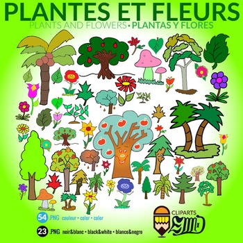 Plants and Flowers - Plantes et fleurs - Plantas y flores
