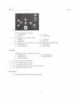 7th Grade Bio-Energy Unit Test
