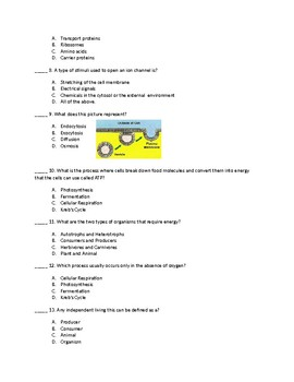 7th Grade Bio-Energy Unit Test