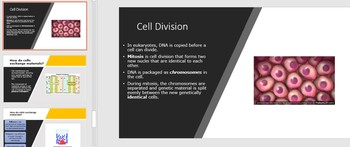 7th Grade Cells Review-2nd Version