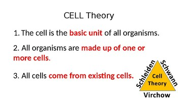 7th Grade Cells Review with Cell Processes-PPT