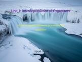 7th Grade Ga Performance Standards Science Unit 1 Interdep