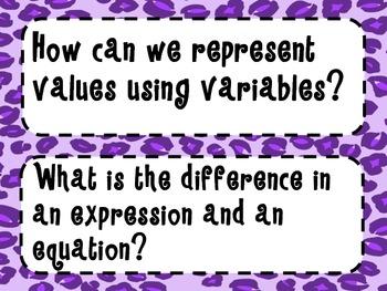 7th Grade Math Essential Questions Cheetah Print *Common Core Aligned*