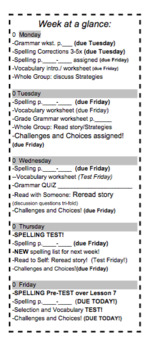 """7th Grade McDougal Littell """"Homeless"""" Challenges&Choices/Week at a Glance"""