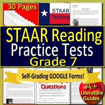 7th Grade STAAR Test Prep Reading Practice Tests - Get Ready for State  Testing!