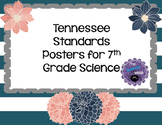 7th Grade Science Standards Posters
