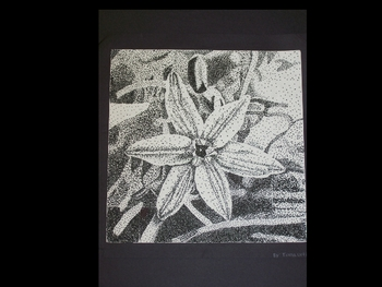 7th Grade Stippling and Intro to George Seurat