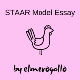 7th Grade STAAR Model Essay