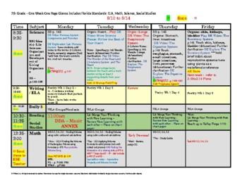 7th Seventh Grade Florida Standards Weekly Lesson Plan Tem