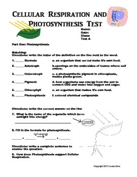 7th grade cellular respiration and photosynthesis test - at or above level