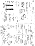 7th grade comprehensive life science review and workbook