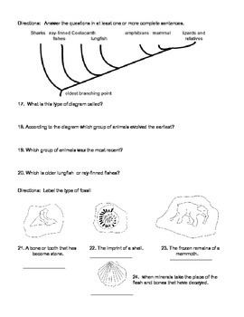 7th grade evolution test - at or above reading level