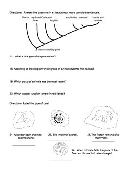 7th grade evolution test - below to low reading level