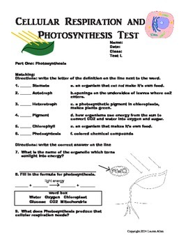 7th grade photosynthesis, respiration and cellular divisio