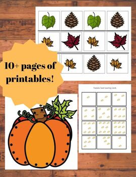 8 AUTUMN Fine Motor Activities for the Inclusive Classroom