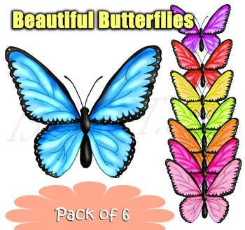 8 Beautiful Butterflies Insect Clipart Set