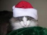 8-Bit Christmas Songs