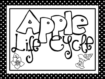 picture relating to Anchor Printable identified as 8 Black and White Apple Existence Cycle Printable Posters/Anchor Charts.