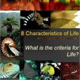 8 Characteristics of Life Foldable