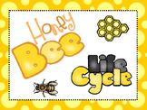8  Honey Bee Life Cycle Printable Posters/Anchor Charts.