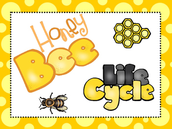 8 Honey Bee Life Cycle Printable Posters/Anchor Charts. by Teach ...