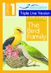 8-IN-1 BUNDLE - Family (Set 1) Grade 1 ('Triple-Track Writ