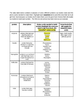 MS-LS1-7, foods and essential amino acides