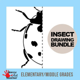 8 Page Insect Symmetry & Grid Drawing Bundle