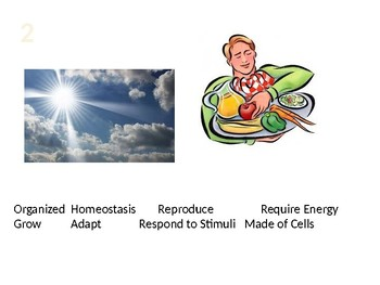 8 characteristics of Living things Powerpoint Quiz