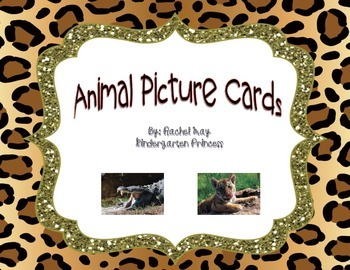 80 Animal Picture Cards
