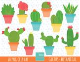 50% SALE CACTUS clipart, botanical clipart,  cute graphics, cactuse