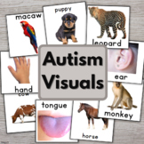 Autism Vocabulary Cards with Pictures for Special Ed