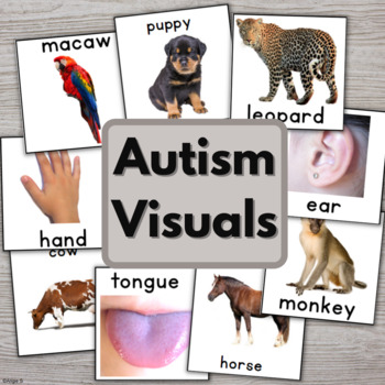 Autism Photo Cards for Speech Therapy, Pecs