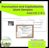 8E-WE3a Punctuation and Capitalization Work Samples- VAAP Evidence!