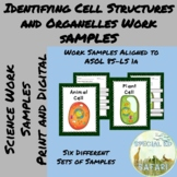 8S-LS 1a Identifying Cell Structure and Organelles Work Sa