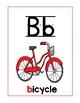 8a Benchmark Advance Kinder Basic Spelling Variations Posters (sound spelling)