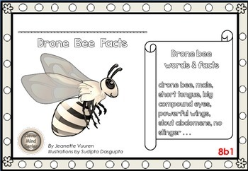 HONEYBEE FACTS: DRONE BEES-DIFFERENTIATED WORKSHEETS-SET1-LANDSCAPE-8b1