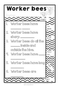HONEY BEE FACTS: WORKER BEE-DIFFERENTIATED WORKSHEETS-PORTRAIT-8c2