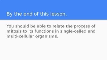 8th Grade Mitosis