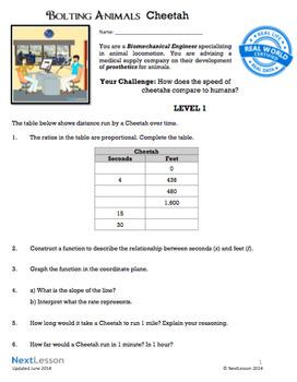 8th Grade Math Performance Tasks Bundle