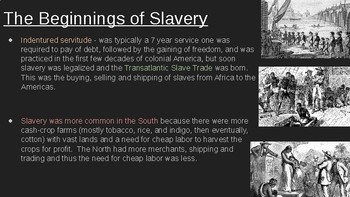 8th Social Studies STAAR Review: Slavery (7 Min Mastery #8)