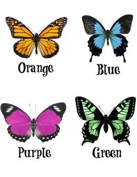9 File Folder for Colors Great for Special Education, PreK, Kindergarten, Autism