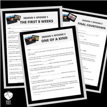 9 Months That Made You: BUNDLE- Follow Along Worksheets & Keys for ALL Episodes