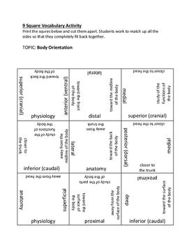 9 Square Vocabulary Activity - Body Orientation